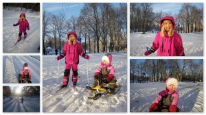 Skid- och snowraceråkning i parken